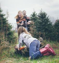 The Lemieux family tree farm holiday mini session