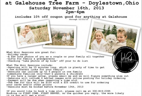 Holiday Tree Farm mini sessions