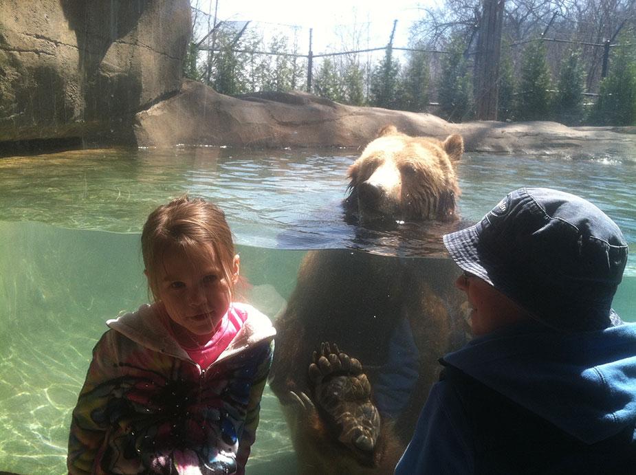 mallory-bear