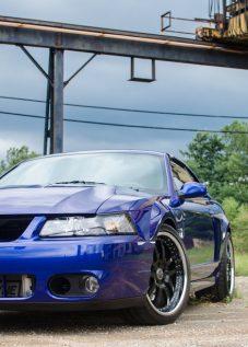 Mustang (1 of 6)