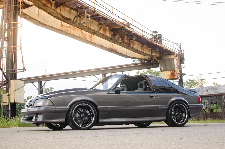 Mustang (2 of 7)