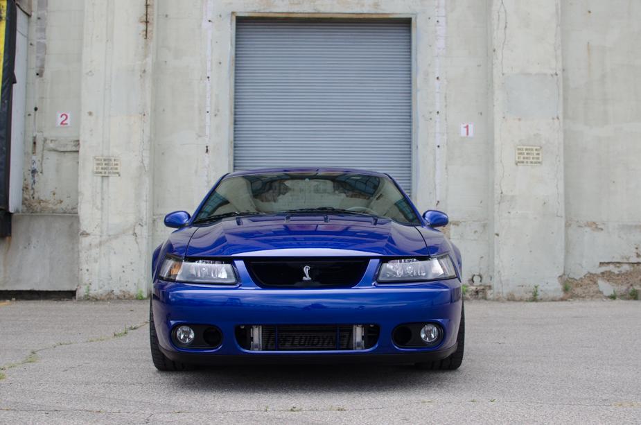 Mustang (3 of 6)