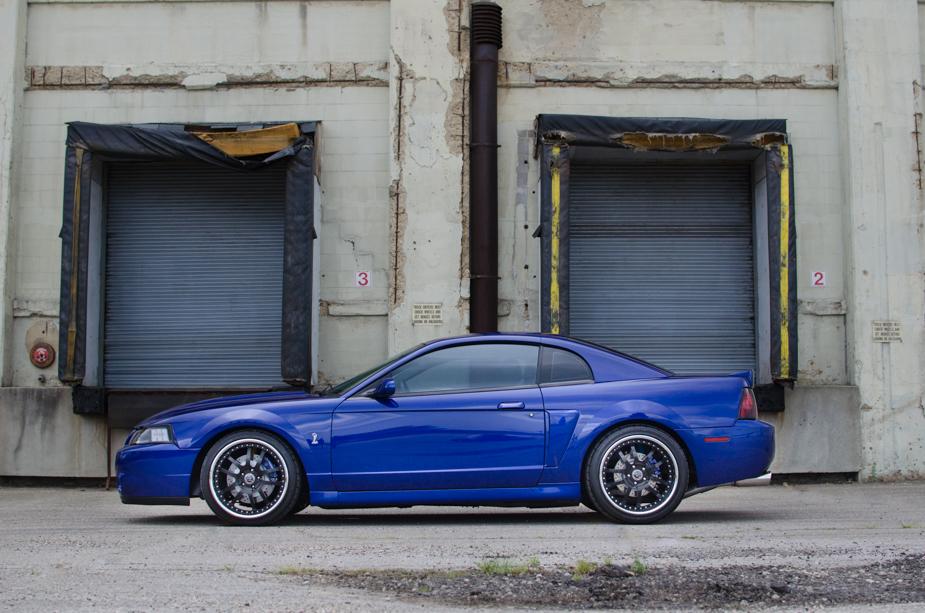 Mustang (4 of 6)